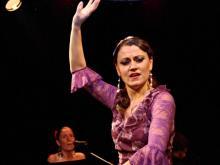 flamenco-vecer-5